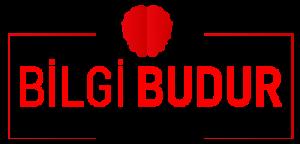 Bilgibudur – Her çeşit bilgiyi içeriğinde barındıran platform.